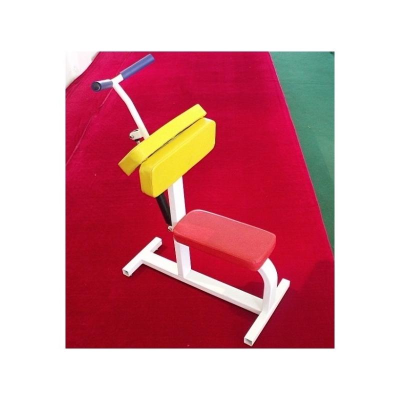 Biceps/Triceps Junior(7 a 14 años)