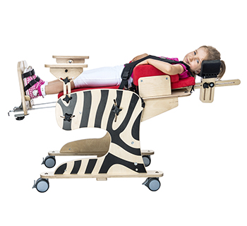 silla-de-rehabilitacion-zebra
